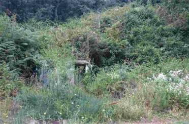 Terreno en venta en Mas Pere - Río de Oro