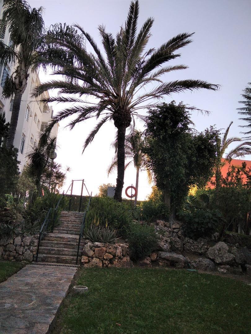 Piso de alquiler en Calle Jacaranda, 2, Los Árboles (Las Lagunas de Mijas, Málaga)
