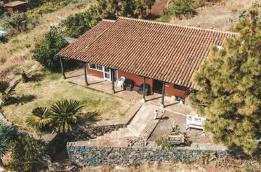 Finca rústica de alquiler en Camino San José, El Sauzal