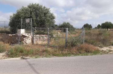 Terreno en venta en Calle del Jazmín, 3, La Huerta