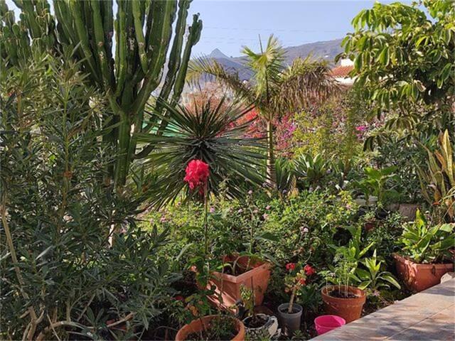Estudio en Alquiler en Valle San Lorenzo de Buzana